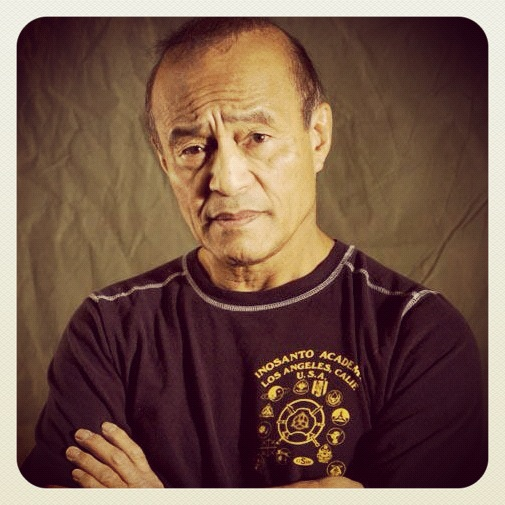 inosanto academy of martial arts the british ninja martial arts